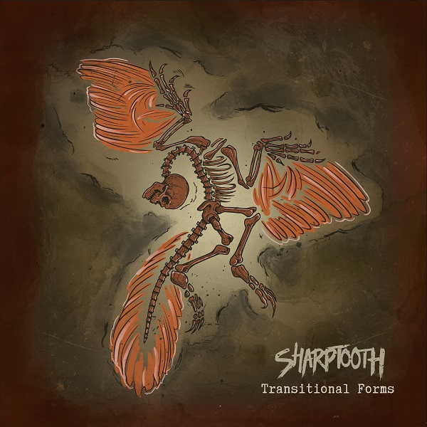 Sharptooth-Transitional-Forms