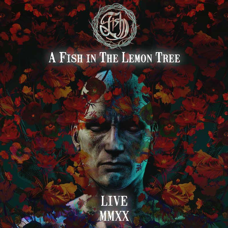 A-Fish-In-The-Lemon-Tree